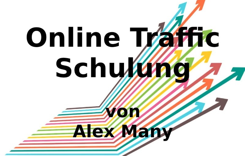online-traffic-schulung-alex-many
